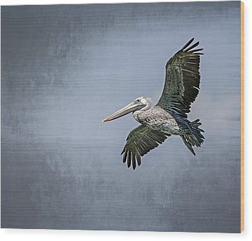 Pelican Flight Wood Print by Carolyn Marshall