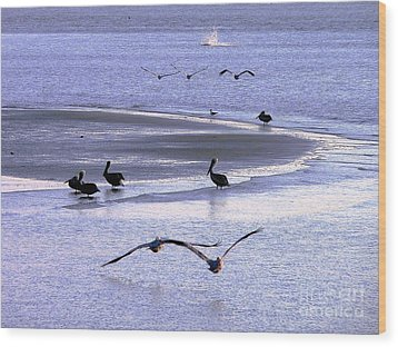 Pelican Island Wood Print by Al Powell Photography USA