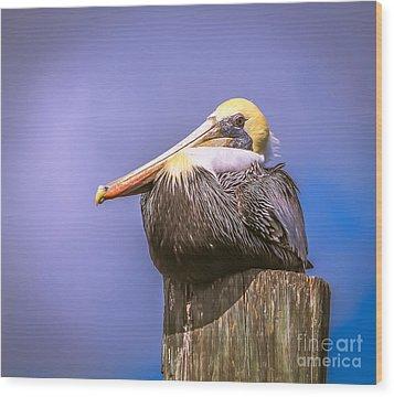 Pelican On Break Wood Print
