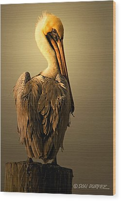 Wood Print featuring the photograph Pelican On Piling by Don Durfee