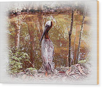 Pelican Posed Wood Print by Martha Ayotte
