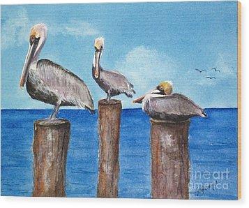 Pelican Trio Wood Print