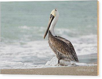Pelican Waves Wood Print