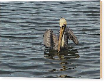 Pelican Wing In A  Twist Wood Print by Jean Noren