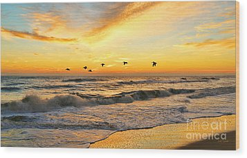 Pelicans At Sunrise  Signed 4651b 2  Wood Print