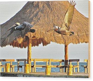 Pelicans In Flight Wood Print by Sean Griffin