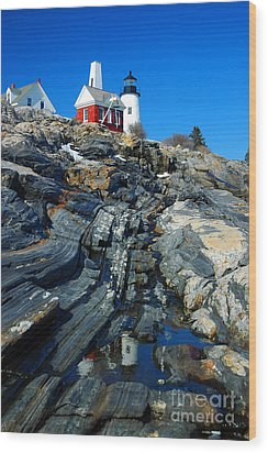 Pemaquid Point Lighthouse Reflection - Seascape Landscape Rocky Coast Maine Wood Print by Jon Holiday