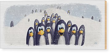 Penguin Winter Wood Print by David Breeding