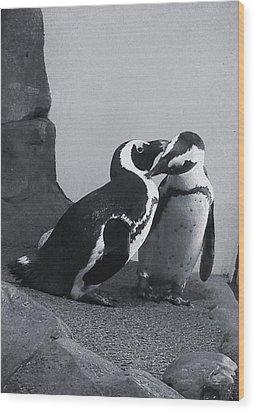 Penguins Wood Print by Sandy Taylor