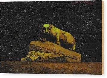 Penn State Stars Wood Print