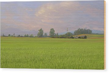 Penngrove Field Wood Print by Thomas  Hansen
