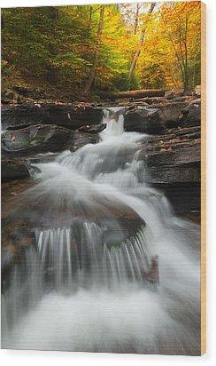 Wood Print featuring the photograph Pennsylvania by Bernard Chen