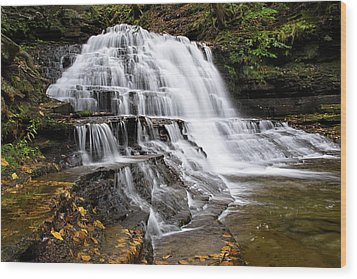 Wood Print featuring the photograph Pennsylvania Waterfall by Christina Rollo