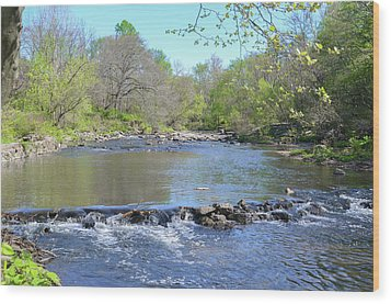 Wood Print featuring the photograph Pennypack Creek - Philadelphia by Bill Cannon