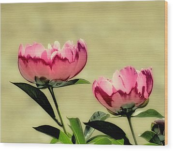 Peony Pair - Enhanced Wood Print by MTBobbins Photography