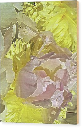 Peony Perfect Wood Print by Gwyn Newcombe