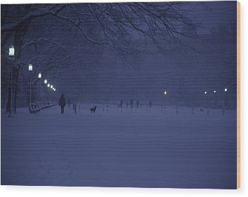 People Walk Their Dogs Wood Print by Stacy Gold