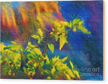Pepper Plant II Wood Print