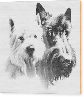 Wood Print featuring the digital art Pepsi And Max by Charmaine Zoe