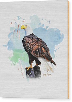 Perched Eagle Wood Print by Greg Collins