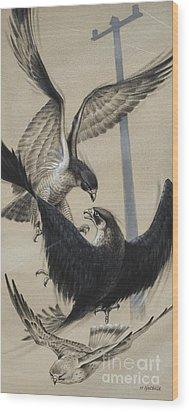 Peregrine Falcon And Kestrel Wood Print