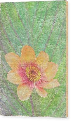 Perfect Peach Wood Print by JQ Licensing