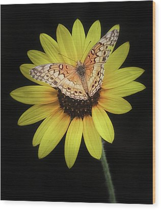 Perfect Timing Wood Print by Elaine Malott