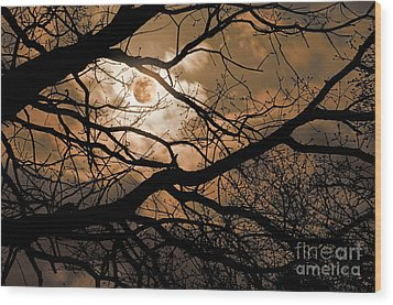 Perigee Moon In The Trees Wood Print by Tamyra Ayles