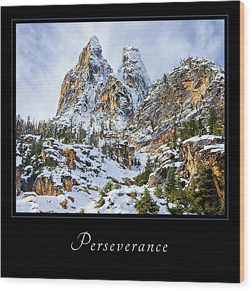 Wood Print featuring the photograph Perserverance 1 by Mary Jo Allen