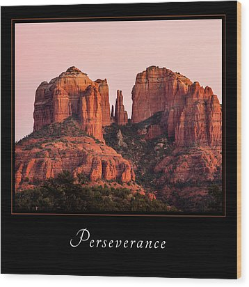 Wood Print featuring the photograph Perserverance 3 by Mary Jo Allen