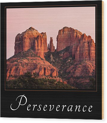 Wood Print featuring the photograph Perseverance by Mary Jo Allen