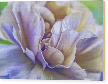 Wood Print featuring the digital art Persian Blooming Buttercup by Julie Palencia