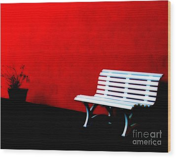 Perspective In Bench White   Wood Print by Steven  Digman