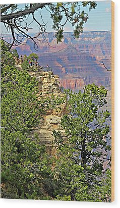 Perspective Of Grand Canyon Wood Print by Linda Phelps
