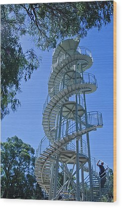 Perth Kings Park Double Helix Dna Tower  Wood Print by Harry Strharsky