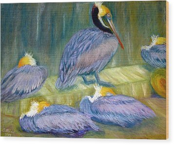 Wood Print featuring the pastel Peruvian Pelicans Two Pastel by Antonia Citrino