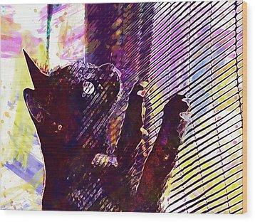 Wood Print featuring the digital art Pet Cat Look Kitten  by PixBreak Art