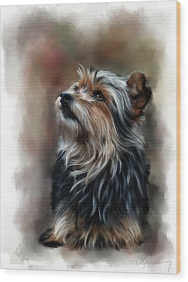 Pet Dog Portrait Wood Print by Michael Greenaway