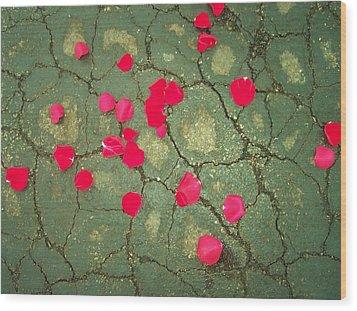 Petals On Asphalt Wood Print by Anna Villarreal Garbis