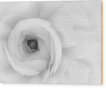 Petals Unfurling Wood Print