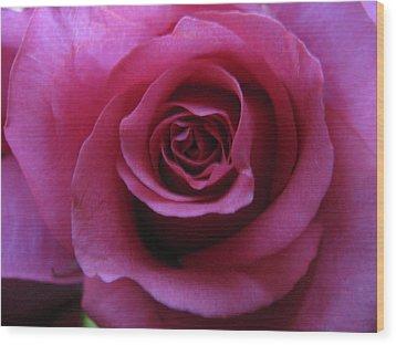 Petals Xxix Wood Print by Lindie Racz