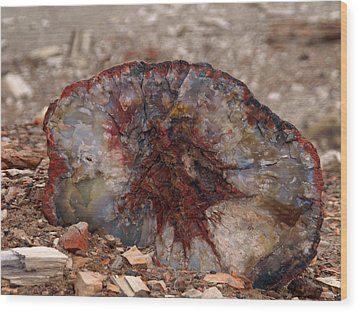 Wood Print featuring the photograph Peterified Jewel by Melissa Peterson