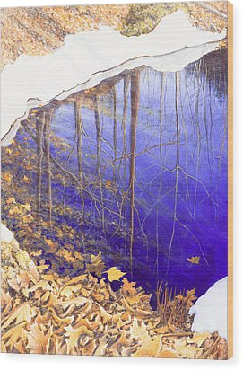 Peter's Spot Wood Print