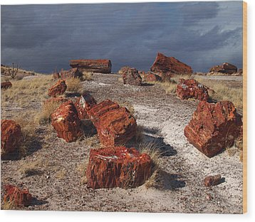 Wood Print featuring the photograph Petrified Forest National Park by James Peterson