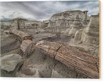 Wood Print featuring the photograph Petrified Remains by Alan Toepfer