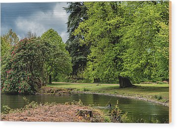 Petworth Lake With Dog Wood Print by Michael Hope
