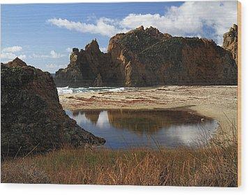 Pfeiffer Beach Landscape In Big Sur Wood Print by Pierre Leclerc Photography