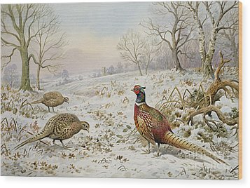 Pheasant And Partridges In A Snowy Landscape Wood Print by Carl Donner