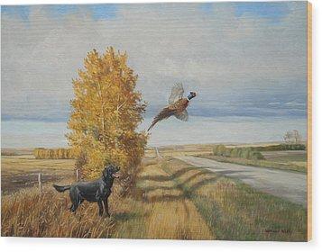 Pheasant Flush Wood Print by Norman Kelly