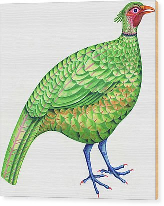 Pheasant Wood Print by Jane Tattersfield